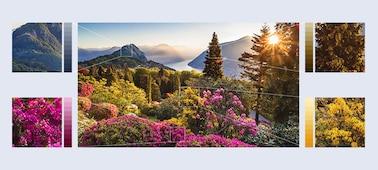 Gambar bunga gunung yang sangat mendetail dengan Object-based HDR Remaster