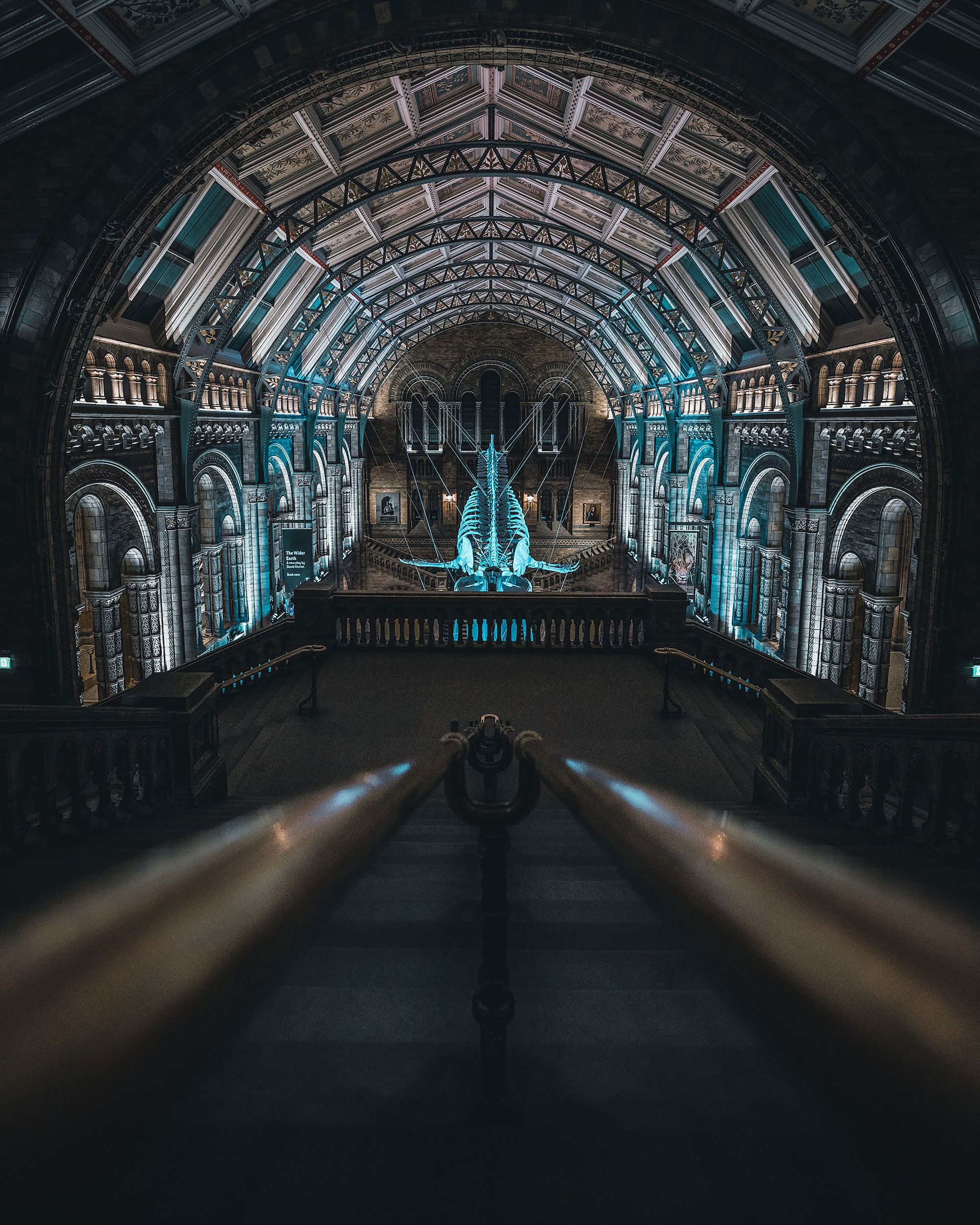 London museum at night with lit skeleton in middle