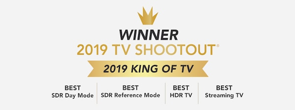 Pemenang 2019 King of TV