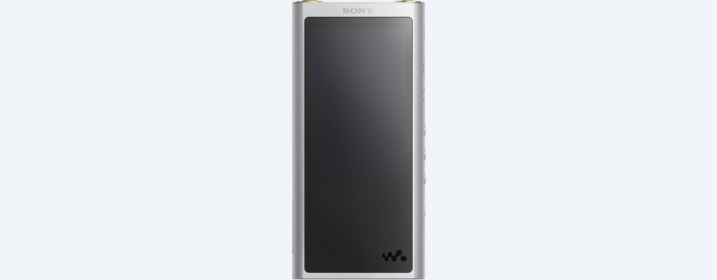 Images of ZX300 Walkman® ZX Series